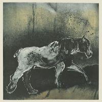 Erna-boerepaard2